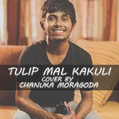 Tulip Mal Kakuli (Cover)
